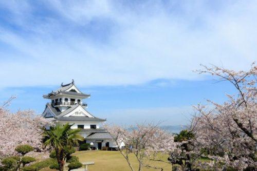 館山市 桜(城山)