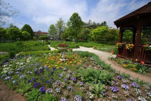 紫竹ガーデン 北海道帯広
