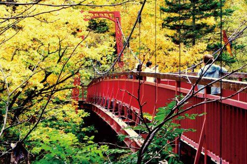定山渓 二見吊橋(No2)