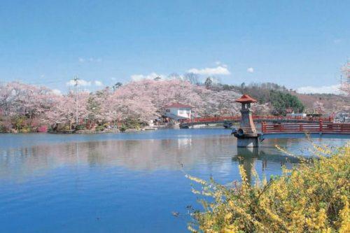 庄原市 上野公園