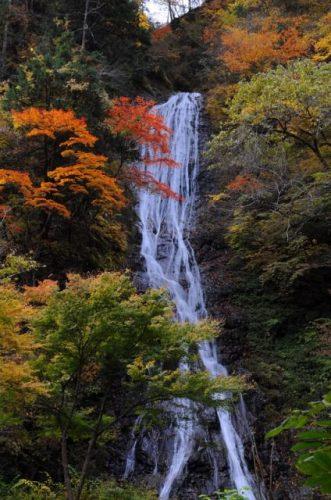 小鹿野両神 丸神の滝