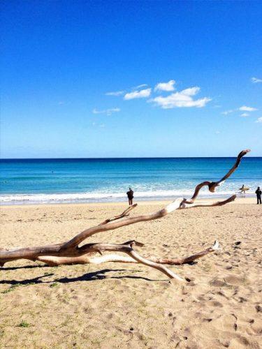土佐清水 大岐の浜