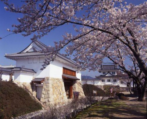 舞鶴 田辺城と舞鶴公園